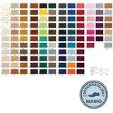Famaco schoensmeer kleurenkaart